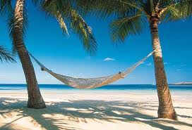 hammock and palm trees on island